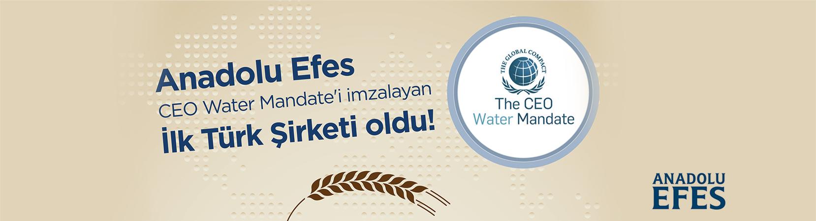 Anadolu_Efes
